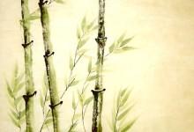 Frühling 2004, Tusche, 60 x 80 cm, gerahmt